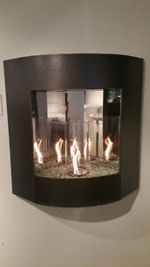 Indoor/outdoor Gel Fuel Fireplace Kitchener / Waterloo Kitchener Area image 1