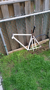 Fixed gear frame and fork
