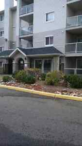 Beautiful 2 Bedroom Condo in a Great Building Available Now!