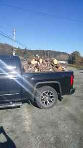 Dried cut up wood for sale