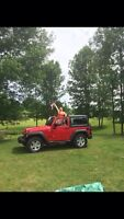 Looking for a 2014 Jeep soft top