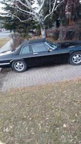 1988 Classic Jaguar XJSC