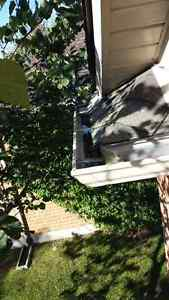 Eavestrough Cleaning/Fall Clean-ups! London Ontario image 4