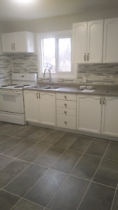 FULLY RENOVATED 2 BEDROOM APARTMENT JANUARY 1