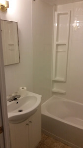 newly renovated1 bedroom basement apartment