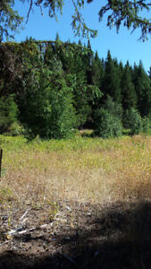 BEAUTIFUL & SCENIC BC LAND FOR SALE