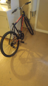 1 year old nakamura echo bike for sale