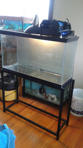 36 x12x20 40 gallon tank and stand. filter . heater .  gravel