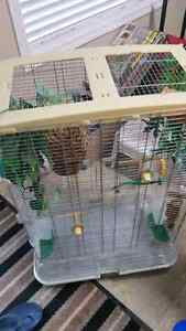 Large Bird Cage with Accessories   In Excellent shape clean.  Ju