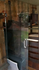 Glass shower door and partition