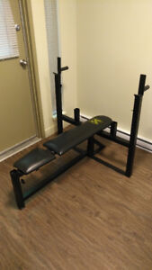 Adjustable heavy duty bench press - Northern Lights