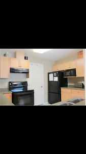 2 Bedroom 1.5 Bathroom Condo for Rent Great location in Sh-Pk