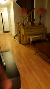 Townhouse in Greenwood park area  4 bdrm+2.5 baths