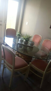 7 Piece Glass dining set