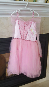 Princess Aurora from sleeping beauty dress