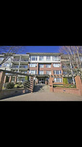 New, clean, quiet apartment in downtown Chilliwack