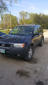 2003 ford escape safetied