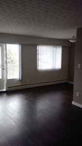 Just Renovated! 3 Bedroom Suite Prince George British Columbia image 6