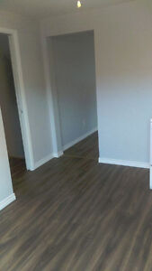 Freshly Renovated Semi For Rent - 3 Bedrooms,  2 Bathrooms! Stratford Kitchener Area image 7