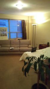 furnished bachelor apartment for sublet