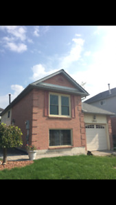 2 Bed 1 Bath House for Rent in Pickering