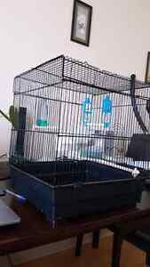 Cage for birds 20$