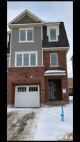 Brand New, Never Lived In 3 Storey  Home For Lease