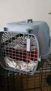 Travel crate for small to medium pets