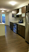 New Town House for Rent Stoney Creek