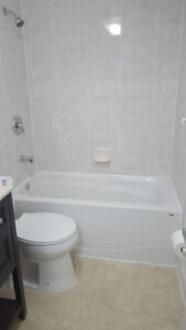 Newly finished 2 bedrooms basement apartment available for rent