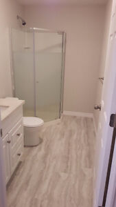 Renting a New Brand  Bedroom in a Basement of a house. Kitchener / Waterloo Kitchener Area image 3