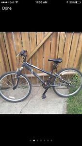 NORCO woman's bike must go today moving tomororw