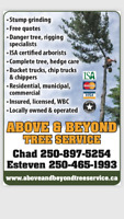 Above & Beyond Tree Service