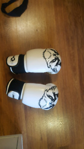 Kimurawear boxing gloves
