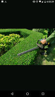 Residential landscape and cleaning give us a call today