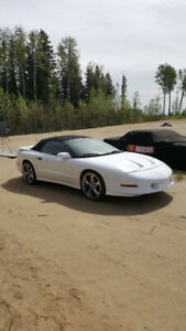 for sale 1997 Transam convertible
