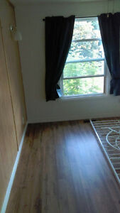 Freshly Renovated Semi For Rent - 3 Bedrooms,  2 Bathrooms! Stratford Kitchener Area image 4