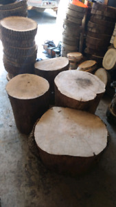 Tree Stumps / Stands / Logs