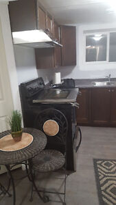 Bachelor suite for rent