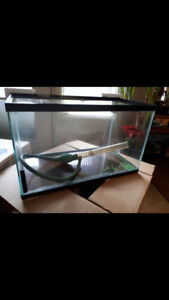 Fish Reptile Aquarium, Cover, Light, Heater, Filter, Supplies
