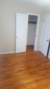 Summer Roommate needed in great downtown apartment!