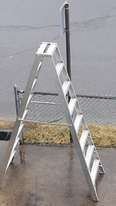 8 foot, 2 sided ladder