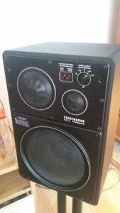 Haut-parleur Telefunken TLX -2 Pro