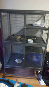 All Living Things Multilevel small animal cage