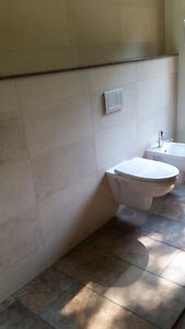 Experienced Contractor Kingston Kingston Area image 4