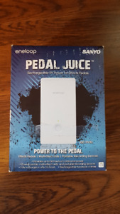 Sony Pedal Juice power supply for pedals