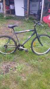 Cool NEXT mountain bike works great Cambridge Kitchener Area image 1