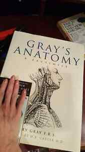 Super large GRAY'S ANATOMY book - Brand NEW