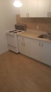 Fully renovated 1 bedroom on Austin street.