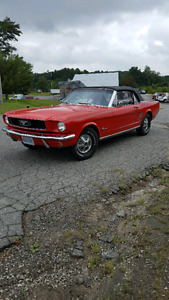 1966 Ford Mustang Convertible 6 Cylinder